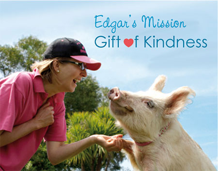 Edgar's Mission Farm Sanctuary - May 2016